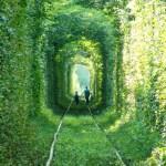 Путешествие по «Тоннелю любви» для влюбленных