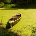 Отдых на воде – озера и водоемы Киевской области