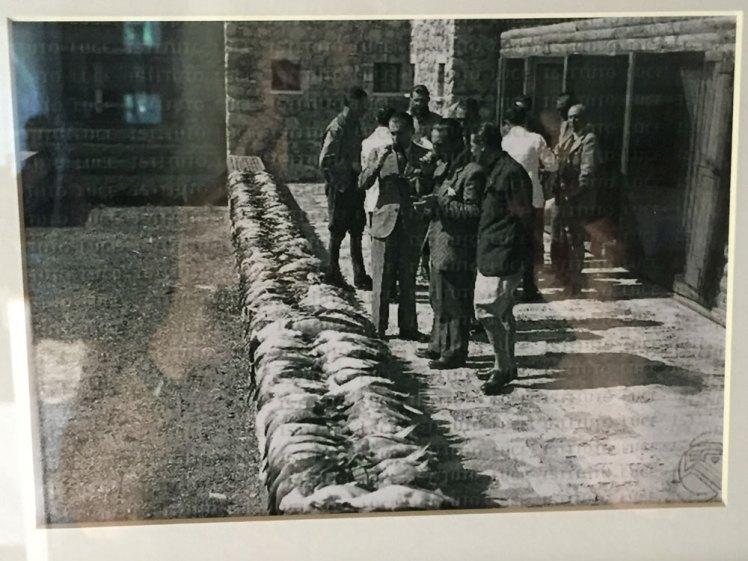 Conti Ciano bij Hoteli i Gjuetise in 1942; fotografie van het Italiaanse Fotoarchief Luce.