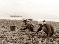 Two women dig into beach for seashells
