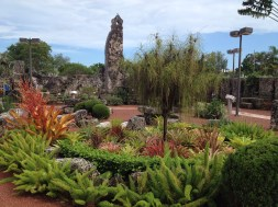 Interesting planting in the grounds of Coral Castle