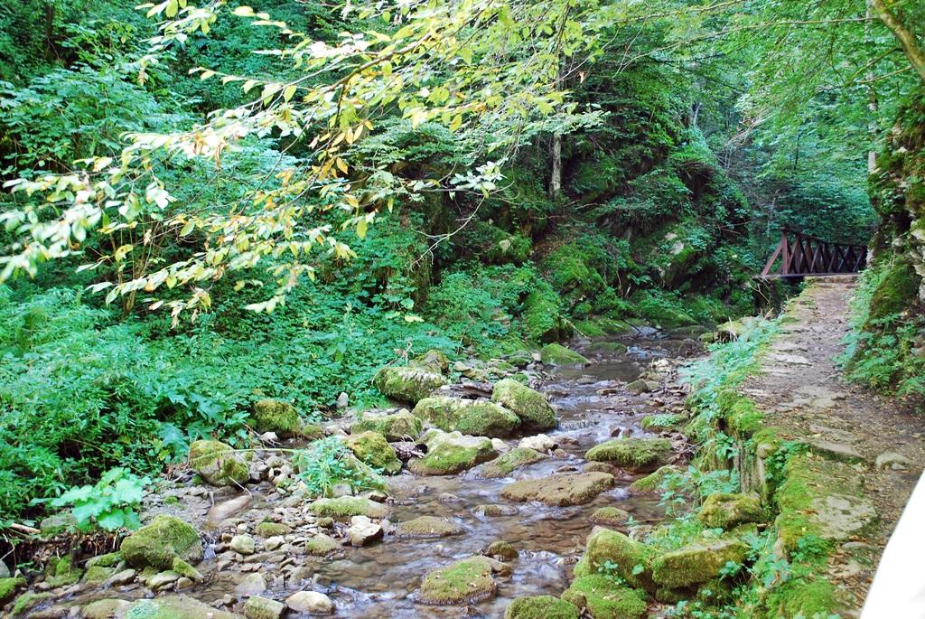 Teteven Waterfall Skoka
