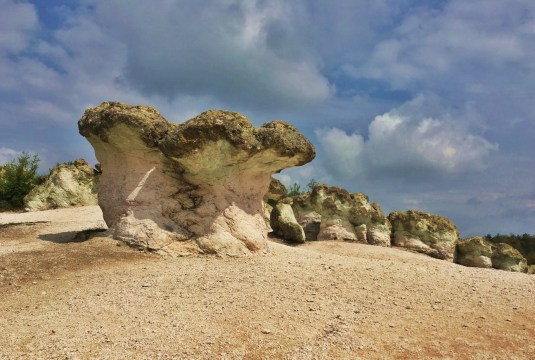 Stone Muschrooms Bulgaria