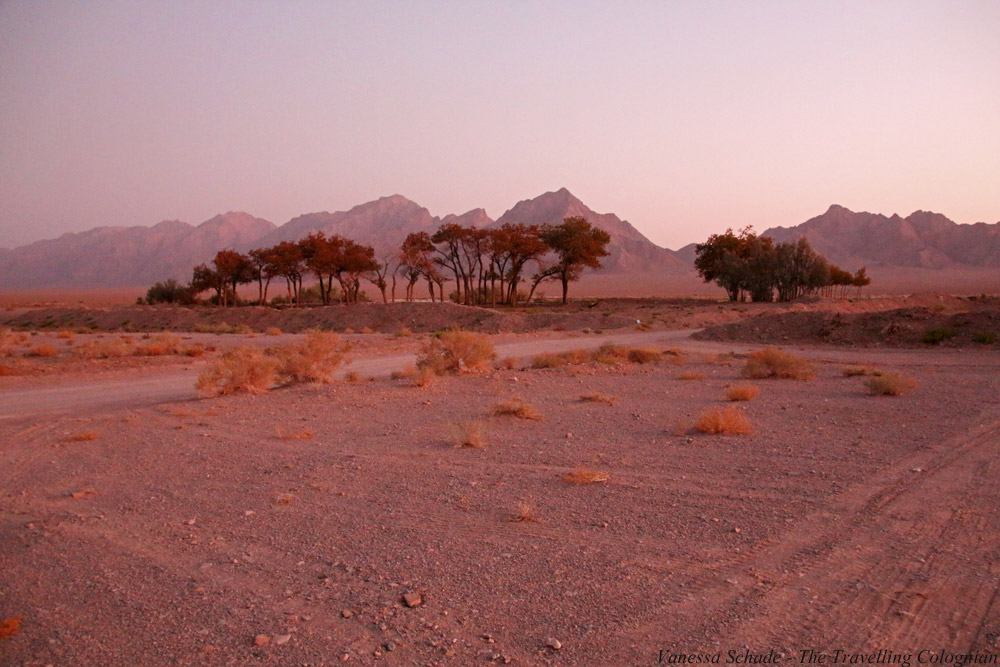 Caravanserei Zein-o-Din_Landscape_Desert_Lut