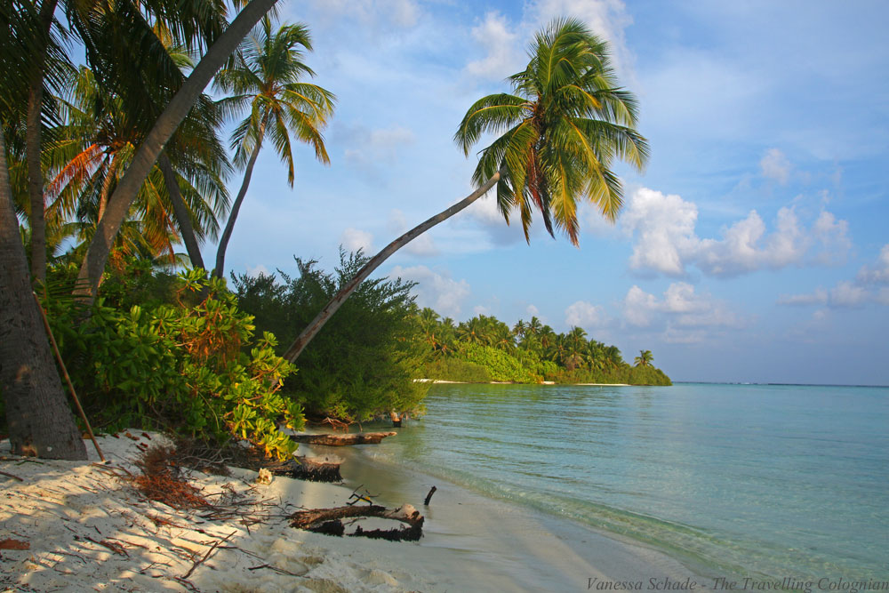 Island_Dream Beach_The Maldives