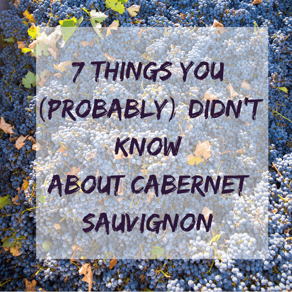 7 Things You (Probably) Didn't Know About Cabernet Sauvignon - Travelling Corkscrew
