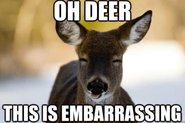 Oh Deer This is Embarrassing Meme