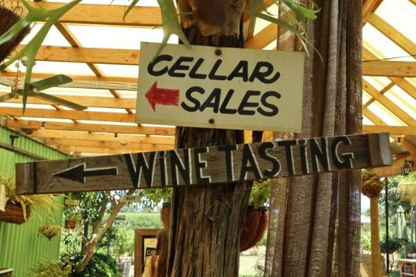 cellar-sales-sign-and-wine-tasting-sign-hanging-on-a-tree