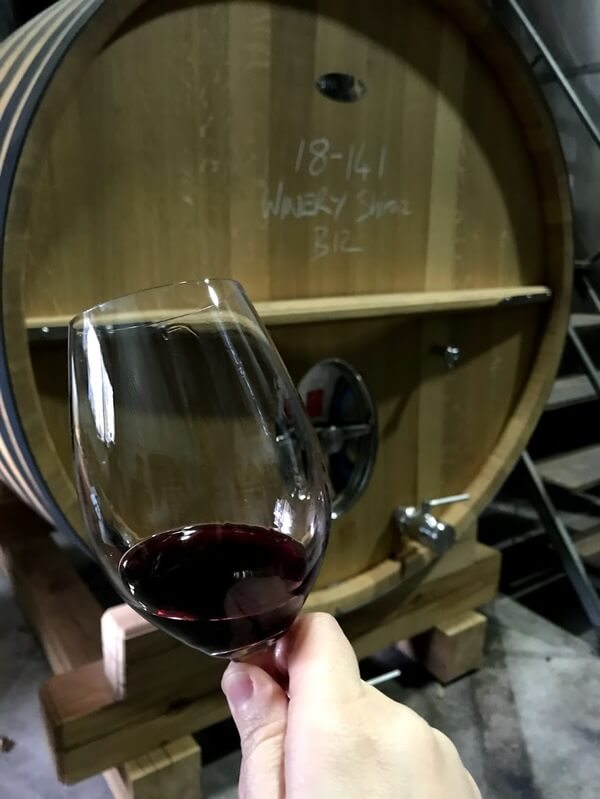 glass-of-shiraz-from-a-large-wine-barrel-at-frankland-estate-in-frankland-river-great-southern