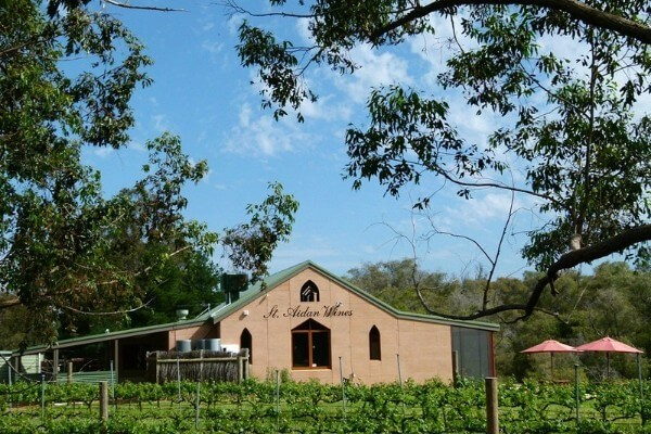 st aidan winery building and vines