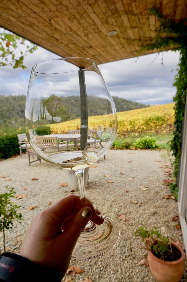 Tasting Chardonnay at Sinapius Cellar Door - Tamar Valley - Tasmania