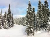 Trans Labrador Highway 3