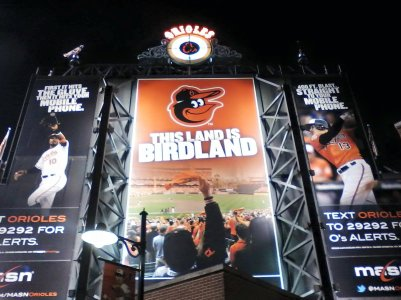 Take in a Baltimore Orioles baseball game at Orioles Park at Camden Yards or a Baltimore Ravens football game at M and T Bank Park. It's all about birds for sports in Charm City.