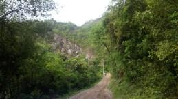 The bumpy, winding road