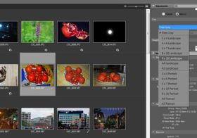 Resizing photographs using ViewNX and Picasa: A guide for novices