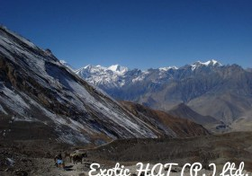 The Annapurna Circuit Trek: All You Need to Know