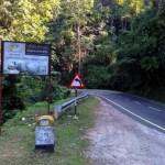 Kaziranga: DIY Travel Guide