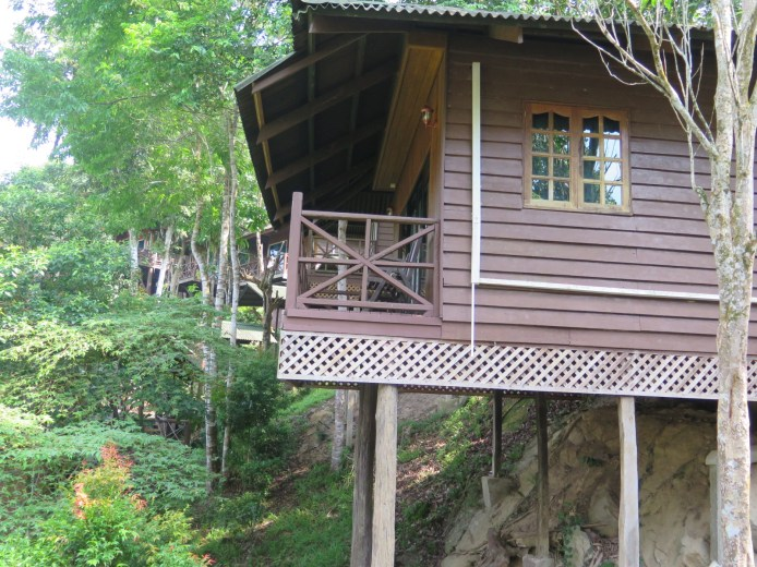 Cabin close up. View of the river.