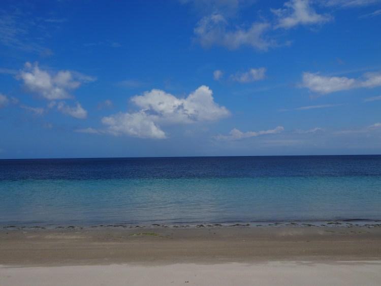 barrys-atuaro-timor-leste