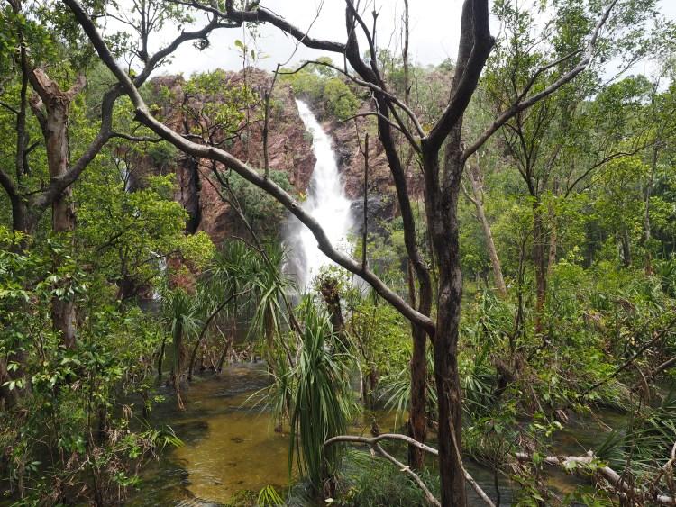 wangi-falls-litchfield-darwin