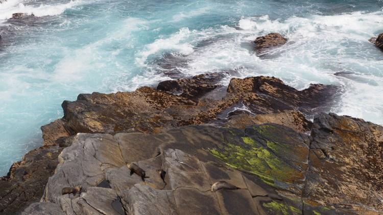 admirals-arch-australia-kangaroo-island
