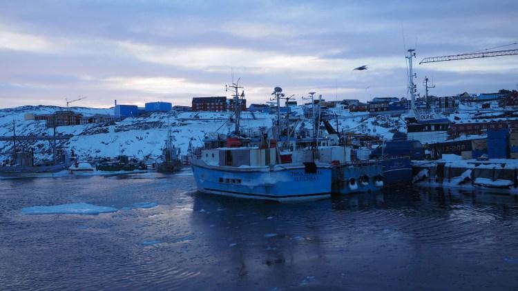 greenland-ilulissat-harbour