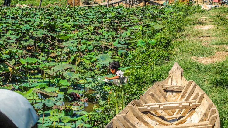 siem-reap-travel-blog-cambodia-budget-backpacking-solo-floating-village-lotus-field