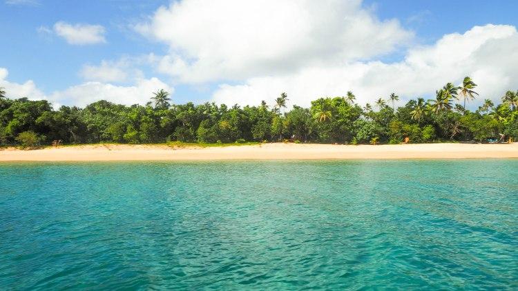 sea-change-travel-blog-eco-lodge-retreat-tonga-swimming-with-humpback-whales-humpbacks-swim-solo-backpacking-haapai-ha'apai