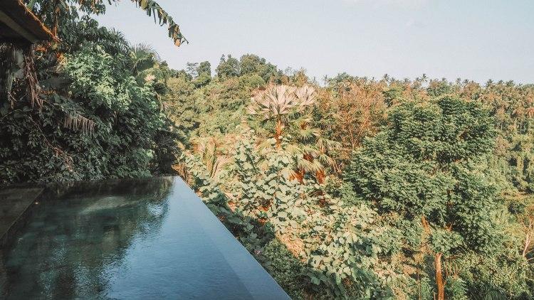 travelling-the-world-solo-travel-blog-hanging-gardens-bali-indonesia-ubud