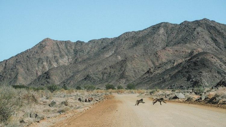 namibia-road-trip-blog-travel-orange-river-fish-river-canyon-cape-town-self-drive-solo