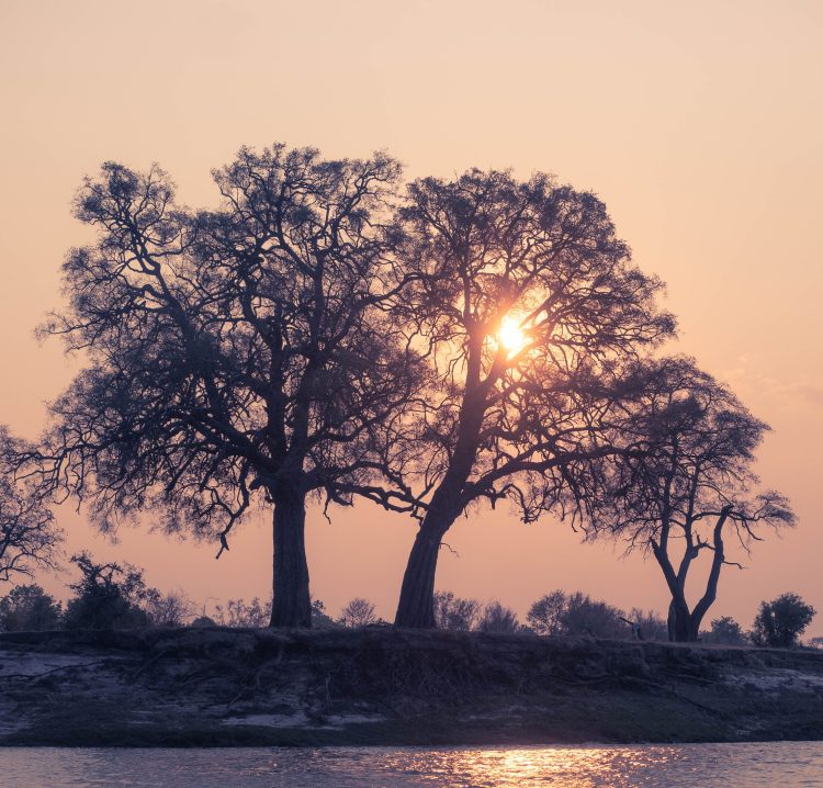 tongabezi-sindabezi-travel-blog-livingstone-zambia-victoria-falls-travelling-the-world-solo