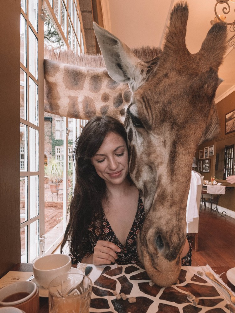 travelling-the-world-solo-blog-giraffe-manor-breakfast-travel
