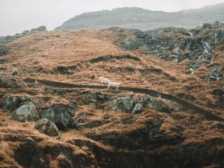 faroe-islands-travel-blog-road-trip-travelling-the-world-solo