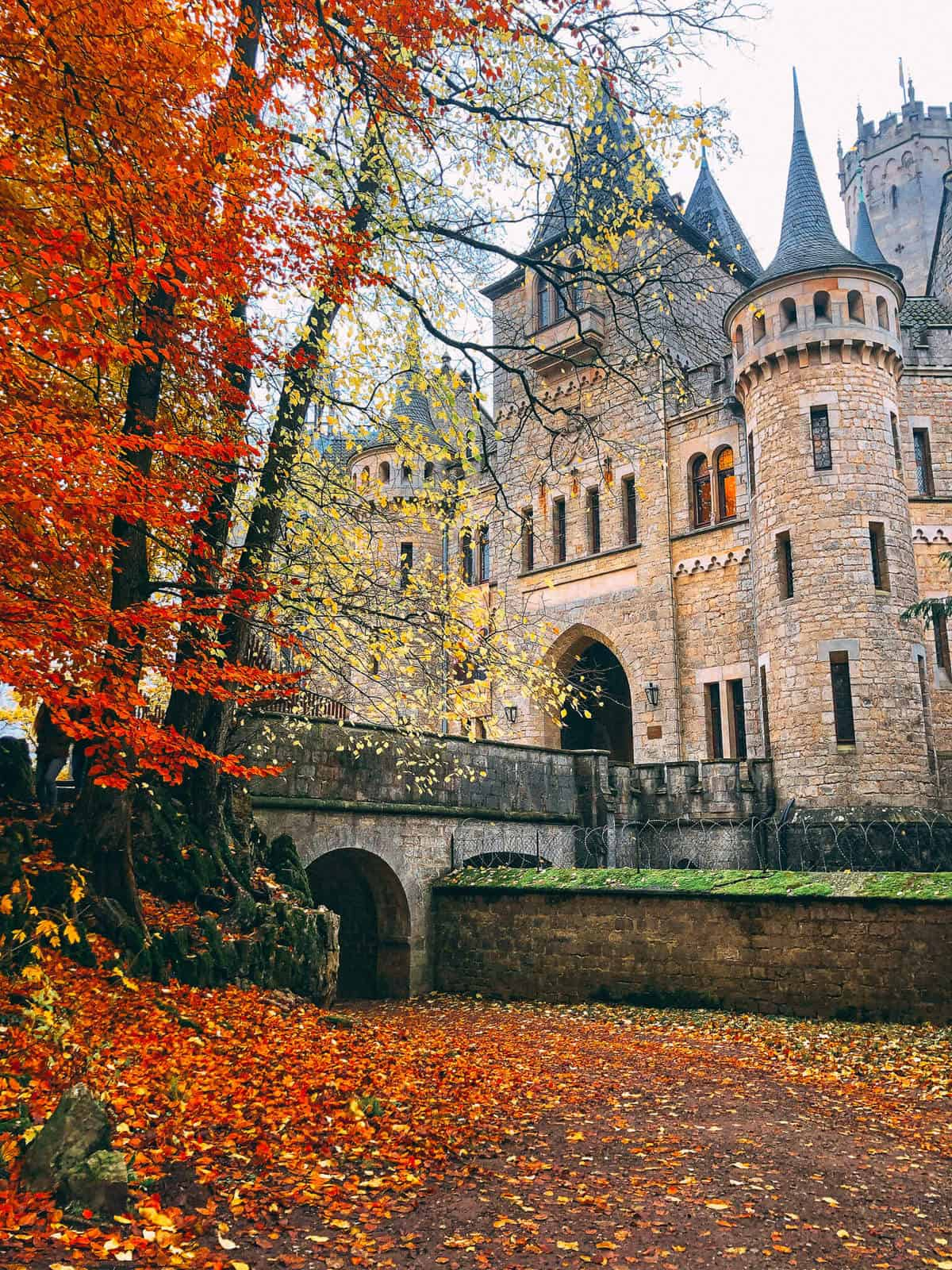 Autumn leaves leaning over a bridge crossing to the entrance of an old castle