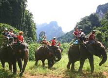 We are still hesitating to do an elephant ride, we need to know the animals are treated well.