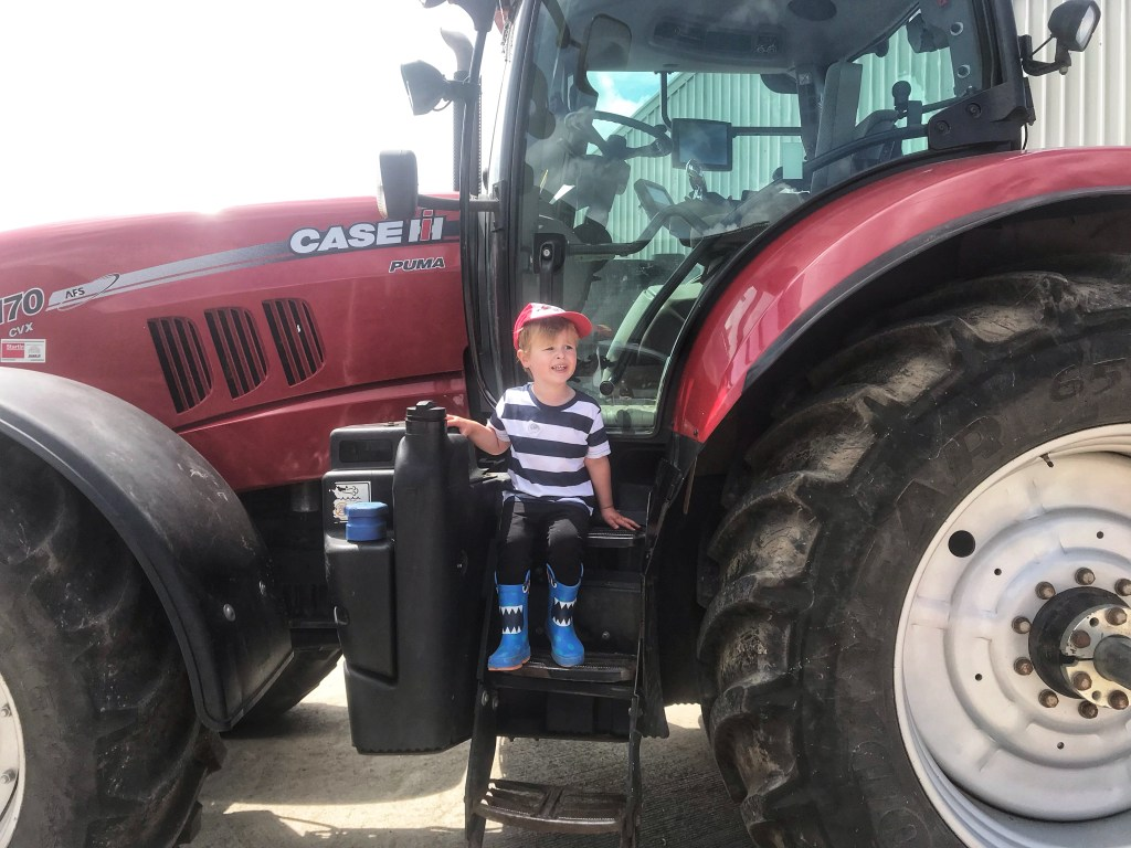 Dexter sat on a red tractor in taylor's Farm on leaf Open farm Sunday
