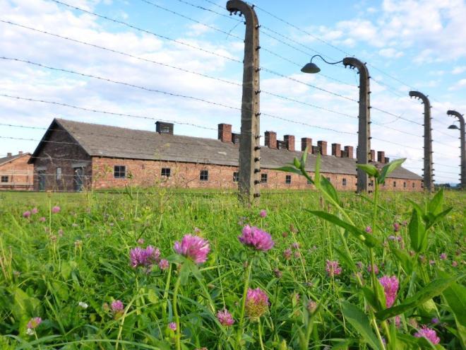 Auschwitz II Birkenau 6