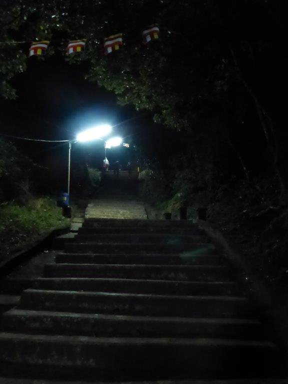 Illuminated tracks all the way to the top of Adam's Peak