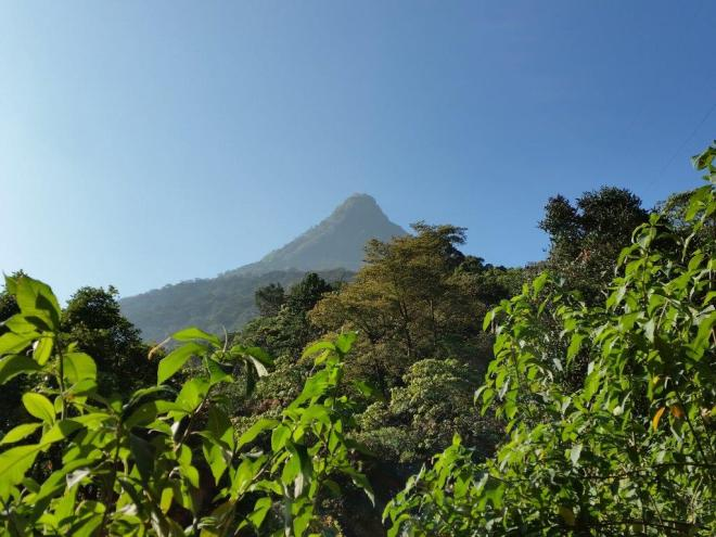 Lookig back at Adam's Peak
