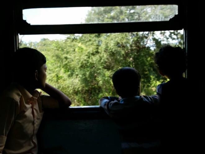 View from the train from Colombo to Polonnaruwa, Sri Lanka 12
