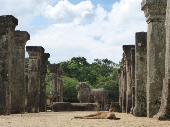 Council Chamber of Nissankamalla in Island Park, Polonnaruwa