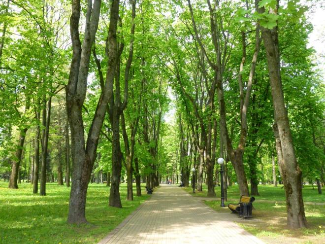 A walk in one of the parks in Minsk, Belarus