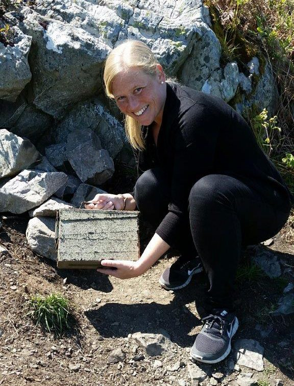Found Europes first cache along the cliff walk between Bray and Greystone outside Dublin, Ireland