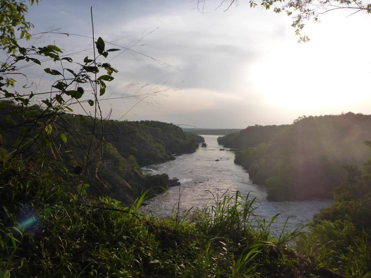 River Nile at Murchison Falls in Uganda Africa