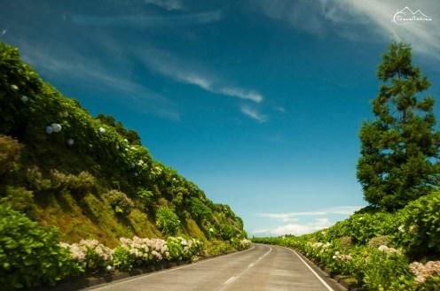 Azores_Anna_Kedzierska_Travellissima-0915