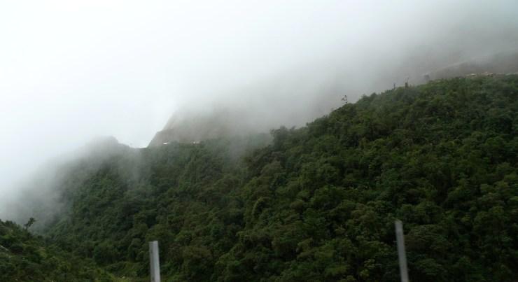 P1020121 Fog