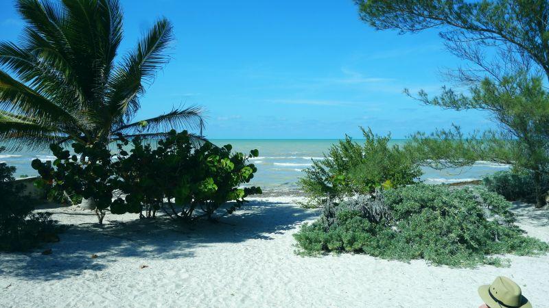 DSC04593 Beach