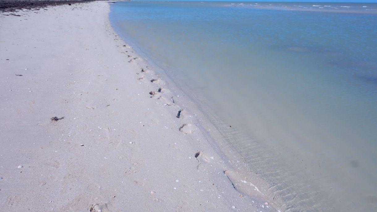 DSC04721 Beach Blue