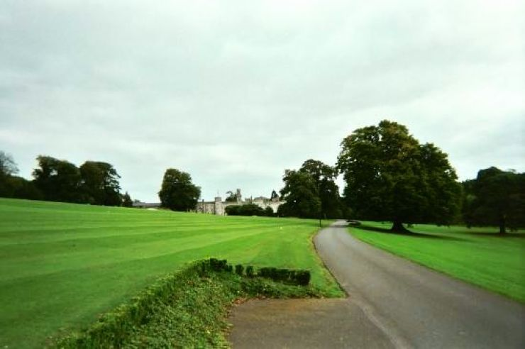 Cabra Castle - Long Drive into Grounds - Copy