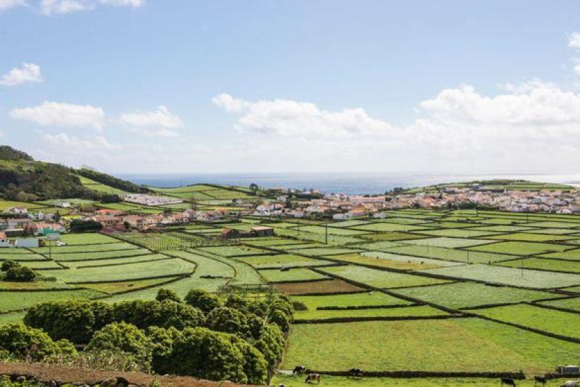 Green Fields Sivan Askayo Terceira For Post 1 4